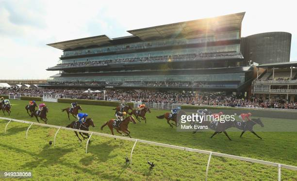 Damien Oliver on Seabrook wins race 6 The Champagne Stakes during the All Aged Stakes Day as part of Sydney Racing at Royal Randwick Racecourse on...