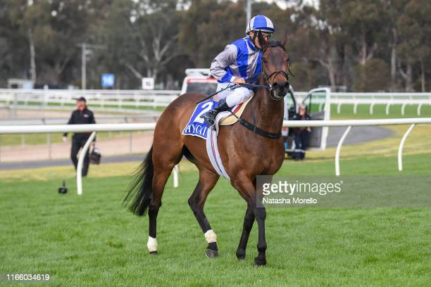 Damien Oliver returns to the mounting yard aboard Extreme Pride after winning the Lloyd Sound Fillies and Mares BM58 Handicap at Seymour Racecourse...