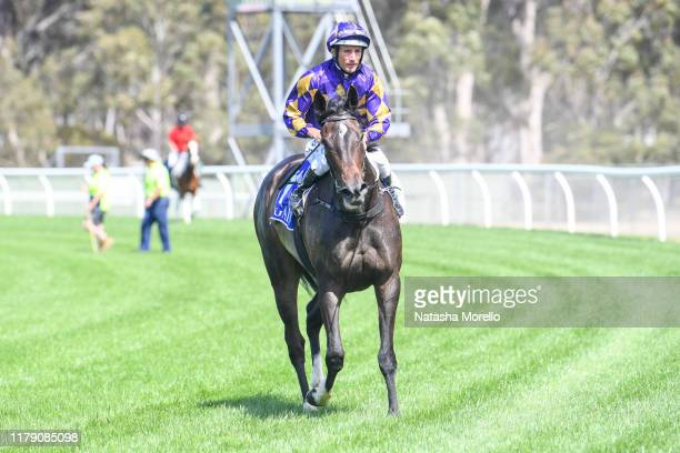Damien Oliver returns to the mounting yard aboard Highland Jakk after winning the Lloyd Sound Maiden Plate at Seymour Racecourse on October 31 2019...