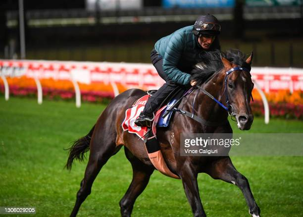 Damien Oliver riding Russian Camelot during a trackwork session ahead of the All Star Mile, at Moonee Valley Racecourse on March 09, 2021 in...