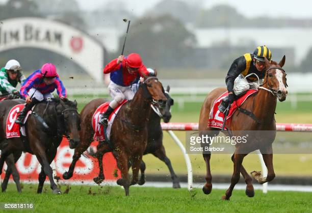Damien Oliver riding Special Diva wins race 3 the Clanbrooke Racing Handicap during Grand National Hurdle Day at Sandown Lakeside on August 6 2017 in...