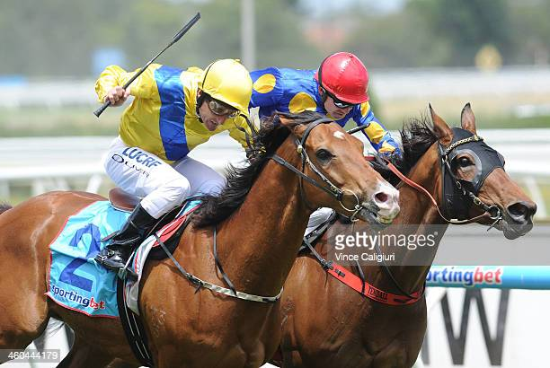 Damien Oliver riding The Wingman wins Race 3 during Melbourne Racing at Caulfield Racecourse on January 4 2014 in Melbourne Australia
