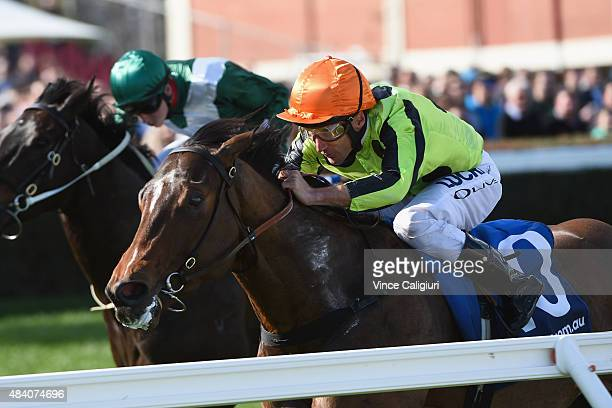 Damien Oliver riding Vezalay wins Race 4 during Melbourne racing at Caulfield Racecourse on August 15 2015 in Melbourne Australia