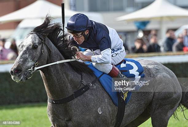 Damien Oliver riding Volcanic Ash wins Race 3 during Melbourne Racing at Caulfield Racecourse on July 25 2015 in Melbourne Australia