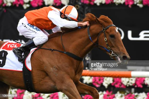 Damien Oliver riding Vow and Declare wins Race 7, TCL TV Stakes during Oaks Day at Flemington Racecourse on November 08, 2018 in Melbourne, Australia.