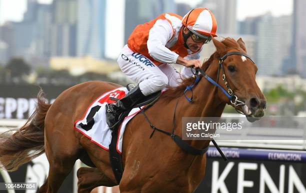 Damien Oliver riding Vow and Declare wins Race 7 TCL TV Stakes during Oaks Day at Flemington Racecourse on November 08 2018 in Melbourne Australia