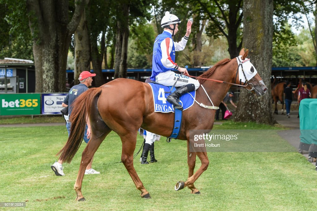 Damien Thornton returns to the mounting yard on Life of Waldo after winning the bet365 Official Price Guarantee BM58 Handicap at Kyneton Racecourse on February 21, 2018 in Kyneton, Australia.