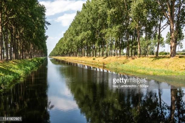 damme - damme stock pictures, royalty-free photos & images