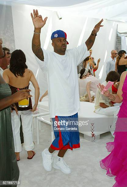 Damon Dash during Dior Dance for Life to Benefit the Aaliyah Memorial Fund a Program of the Entertainment Industry Foundation at Private Residence in...