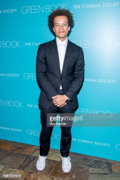 Damon Gillespie attends the Green Book New York Special Screening hosted by the Cinema Society at The Roxy Hotel Cinema on November 14 2018 in New...