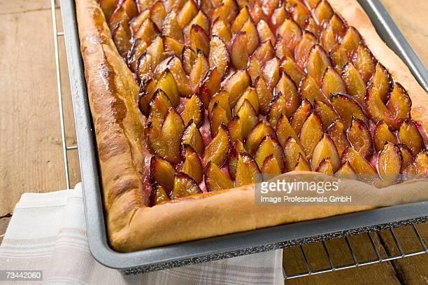 Damson cake (Zwetschgendatschi) on a baking tray