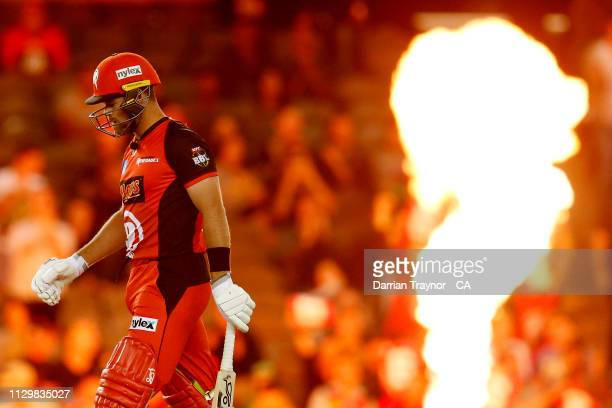 Dan Christian of the Renegades bats during the Big Bash League semi final between the Melbourne Renegades v Sydney Sixers at Marvel Stadium on...