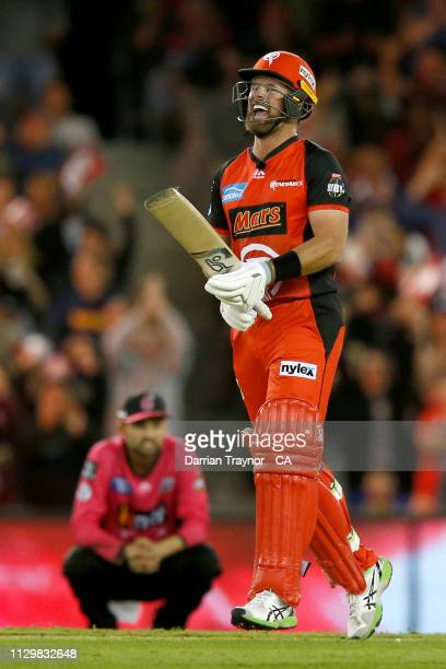 Dan Christian of the Renegades celebrates the winning runs during the Big Bash League semi final between the Melbourne Renegades v Sydney Sixers at...