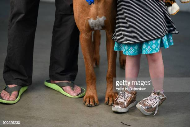 Dan Durland left his Rhodesian Ridgeback Stoney middle and family friend Vivian Naeser all of Colorado Springs pose for a portrait during the...