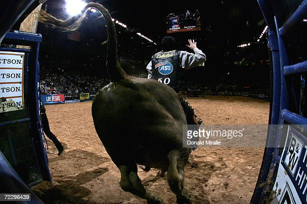 Dan Henricks exits the chut on Bo Time during the Professional Bull Riders World Finals at Mandalay Bay Casino and Hotel October 29 2006 in Las Vegas...