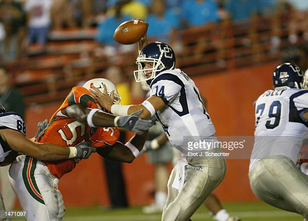 Dan Orlovsky of Connecticut tangles with Miami defender Jamaal Green as he looks to pass during the NCAA football game at the Orange Bowl in Miami,...