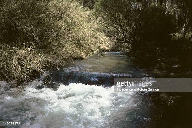 Dan River in the Tel Dan Reserve Upper Galilee Israel