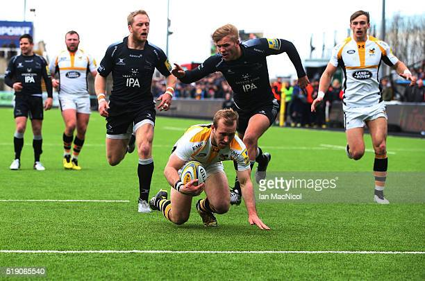 Dan Robson of Wasps drives through to score a try during the Aviva Premiership match between Newcastle Falcons and Wasps at Kingston Park on March 27...