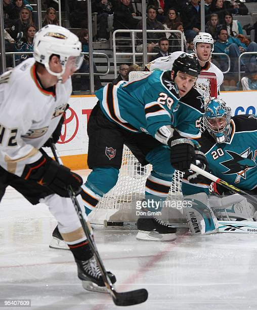Dan Sexton of the Anaheim Ducks tries to get the puck past Ryane Clowe and Evgeni Nabokov of the San Jose Sharks during an NHL game on December 26,...