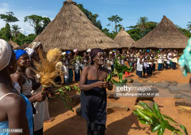 Dan tribe women dancing during a ceremony, Bafing, Gboni, Ivory Coast on May 5, 2019 in Gboni, Ivory Coast.