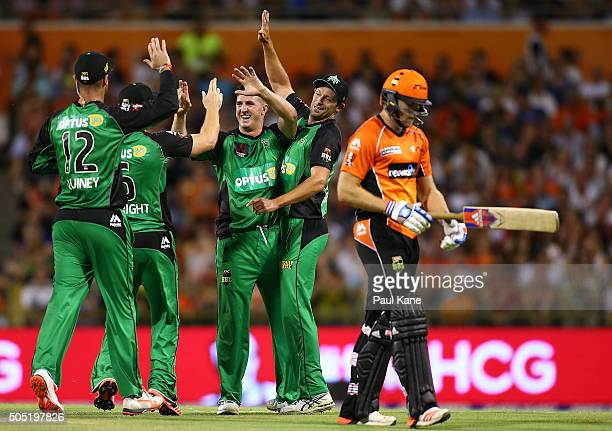 Dan Worrall of the Stars celebrates dismissing David Willey of the Scorchers during the Big Bash League match between the Perth Scorchers and the...