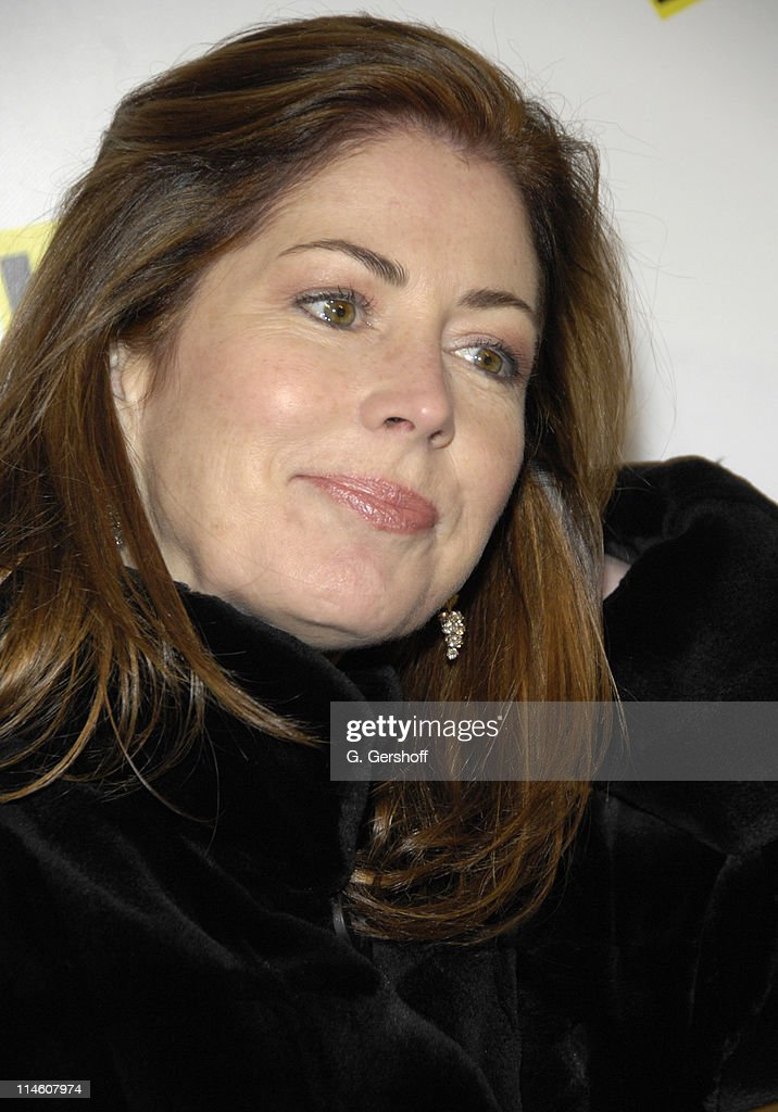 Dana Delany during 'High Fidelity' Broadway Opening - December 7th, 2006 at Imperial Theatre in New York City, New York, United States.