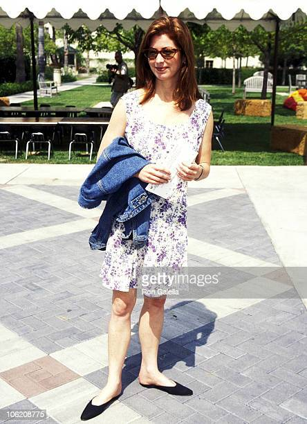 Dana Delany during Premiere of The Indian in the Cupboard at Paramount Studios in Hollywood California United States