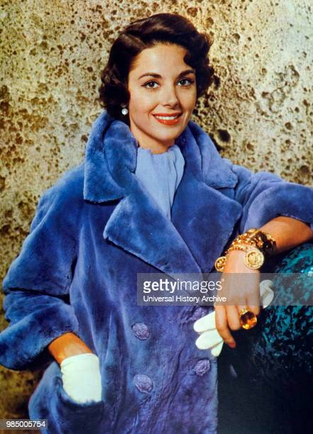 Dana Wynter Germanborn English actress who was raised in England and Southern Africa She appeared in film and television for over forty years...