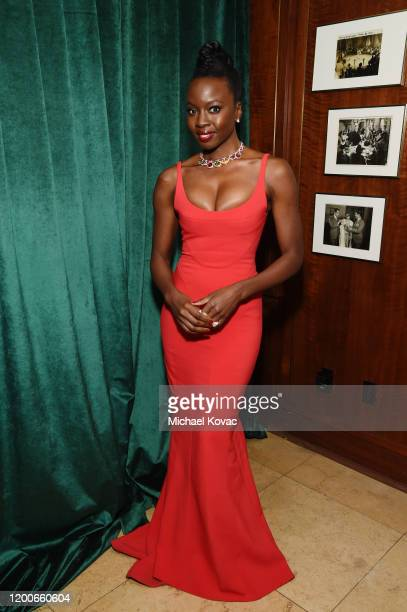 Danai Gurira attends 2020 Netflix SAG After Party at Sunset Tower on January 19 2020 in Los Angeles California