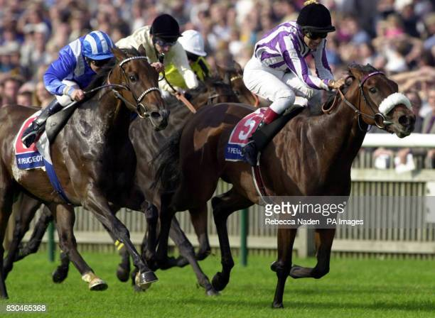 Danceabout No 5 ridden by D Holland wins The Peugeot Sun Chariot race from Alshakar after a Steward's enquiry at Newmarket races