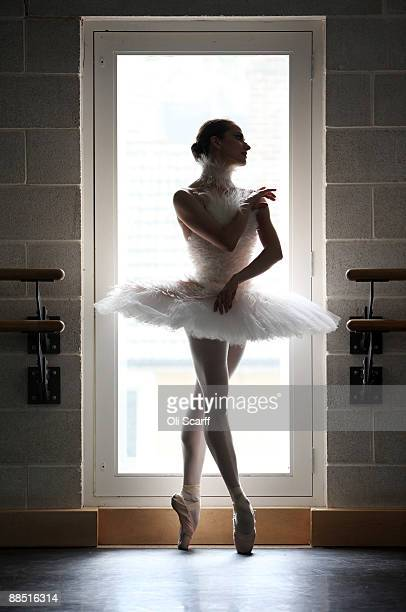 A dancer from the English National Ballet performing 'Ballets Russes' at Sadler's Wells poses in her 'Dying Swan' costume designed by Karl Largerfeld...