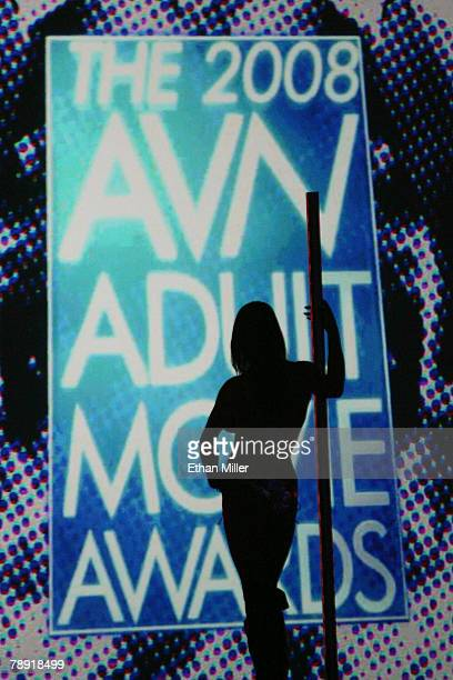 Dancer is silhouetted as she waits to perform during the 25th annual Adult Video News Awards Show at the Mandalay Bay Events Center January 12, 2008...