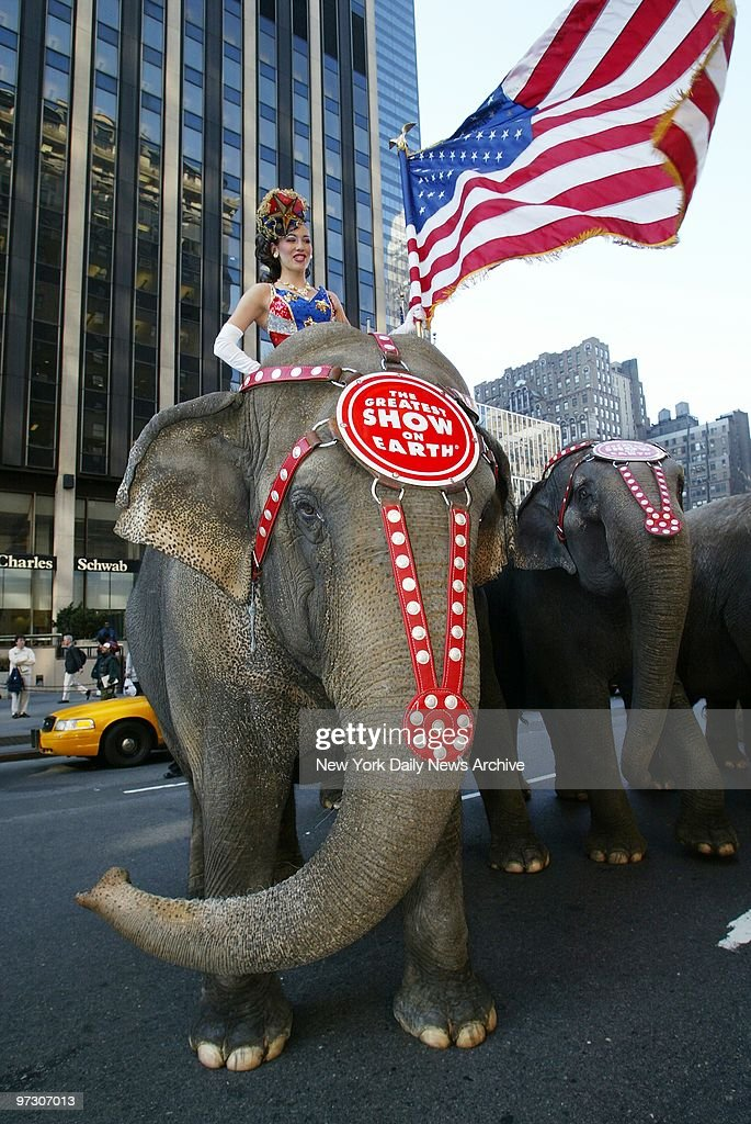 Dancer Loulia Deeva is in the driver's seat - Stars and Stripes in hand - as elephants parade around Madison Square Garden to advertise the fact that the Ringling Bros. and Barnum & Bailey circus has come to town.