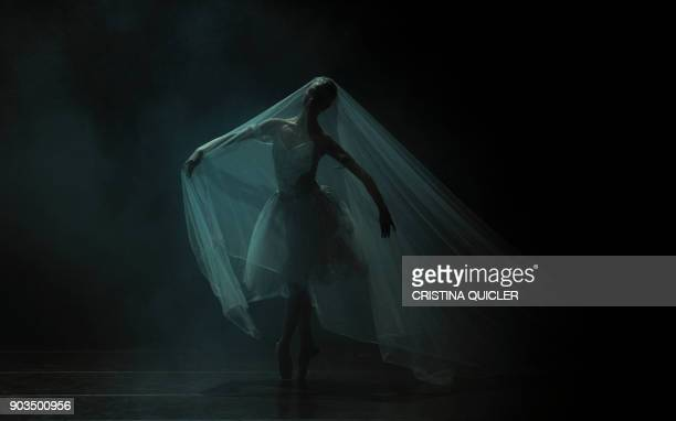 TOPSHOT A dancer of The Spanish National Dance Company performs during a rehearsal ahead of the premiere of 'Don Quixote' at the Theater of The...