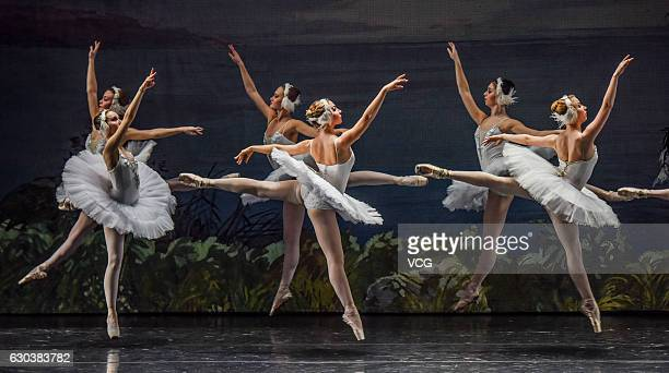 Dancers from a ballet theatre of Saint Petersburg perform during the ballet 'Swan Lake' on December 20 2016 in Nanning Guangxi Province of China