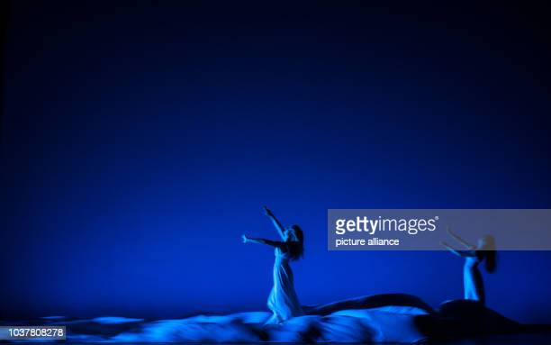 Dancers from the modern dance company Momix Jocelyn Wallace and Simona di Tucci perform during the scene Fantasy flower in Hamburg Germany 02 January...