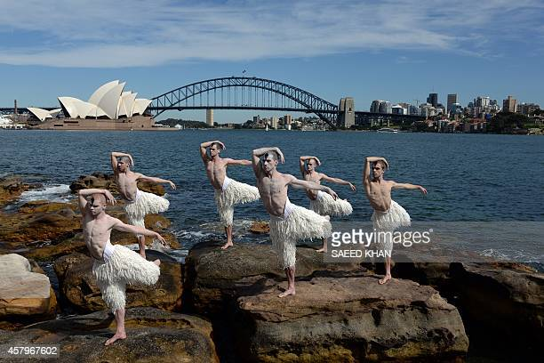 Dancers in their iconic 'Swan Paint' from Mathew Bourne's 'cygneture' work Swan Lake pose in formation in front of Australia's landmark Opera House...