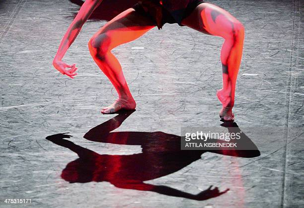 Dancers of the 'Feledi Project' contemporary dance group perform on the stage of the National Dance Theater in Budapest on February 27 2014 during...