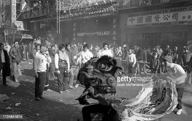 Dancers perform a traditional Lion Dance during the annual Chinese New Year celebrations on Mott Street in the Chinatown neighborhood New York New...