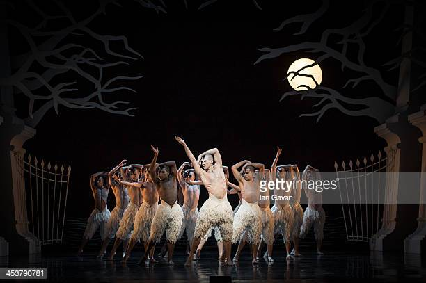 Dancers perform during a photocall for Matthew Bourne's Swan Lake at Sadler's Wells Theatre on December 5 2013 in London England
