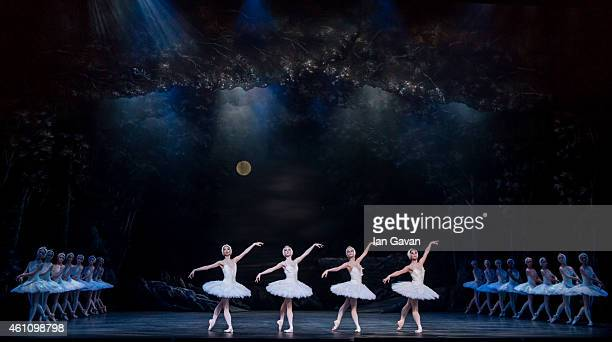 LONDON ENGLAND JANUARY 06 Dancers perform on stage during a dress rehearsal for The English National Ballet's Swan Lake at the London Coliseum on...
