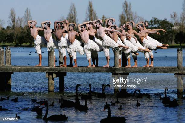 Dancers pose at the photocall prior to the first night of the Melbourne leg of Matthew Bourne's reinvention of Tchaikovsky's Swan Lake at Albert Park...