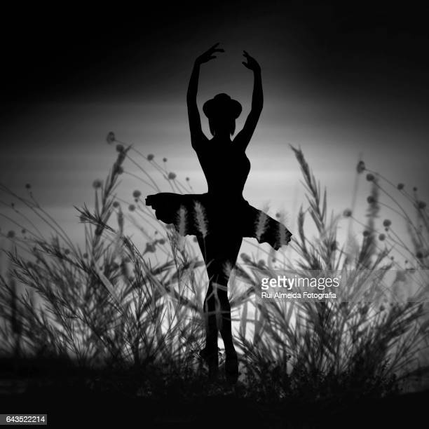 dancing ballerina silhouette - traditional ceremony stock pictures, royalty-free photos & images
