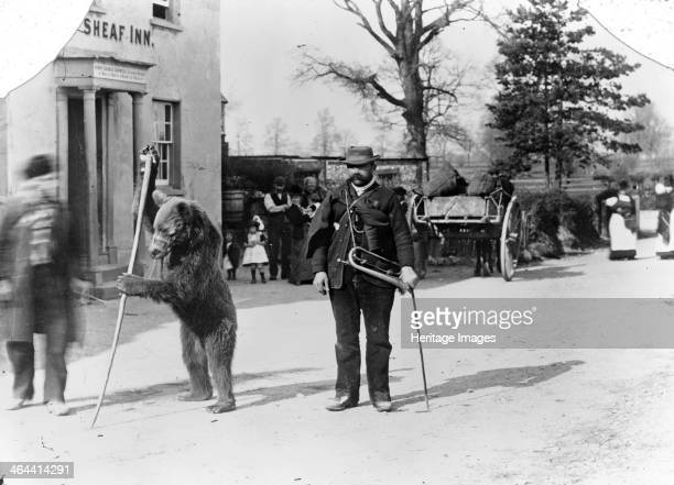 Dancing bear and owner performing outside an inn, Oxfordshire, c1900.