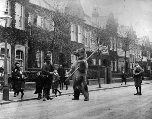 A dancing bear in a London street.