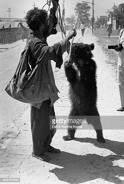 dancing bear in haridwar - dancing bear photos et images de collection