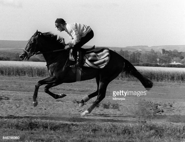 Dancing Brave and jockey Greville Starkey in May 1986 on the gallops