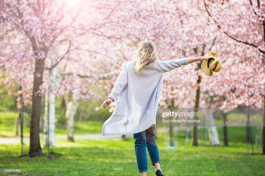 Het dansen, het lopen en het wervelen in mooi park met kersenbomen in bloei : Stockfoto