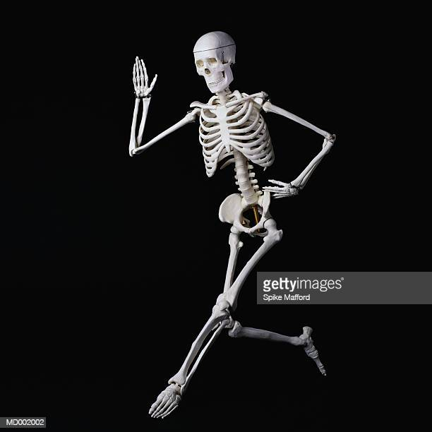 dancing skeleton - funny skeleton stock photos and pictures