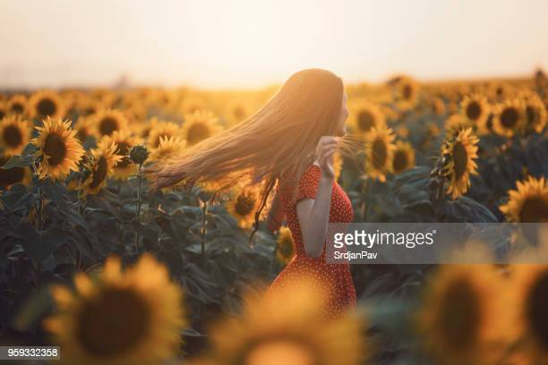dancing with sunflowers - red dress stock pictures, royalty-free photos & images